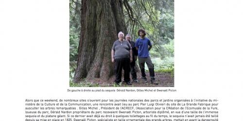 Le toilettage des arbres géants programmé